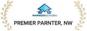 Mammoth-award